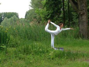 power yoga in het kralingse bos